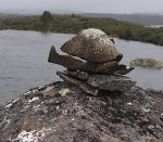 day 3 cairn
