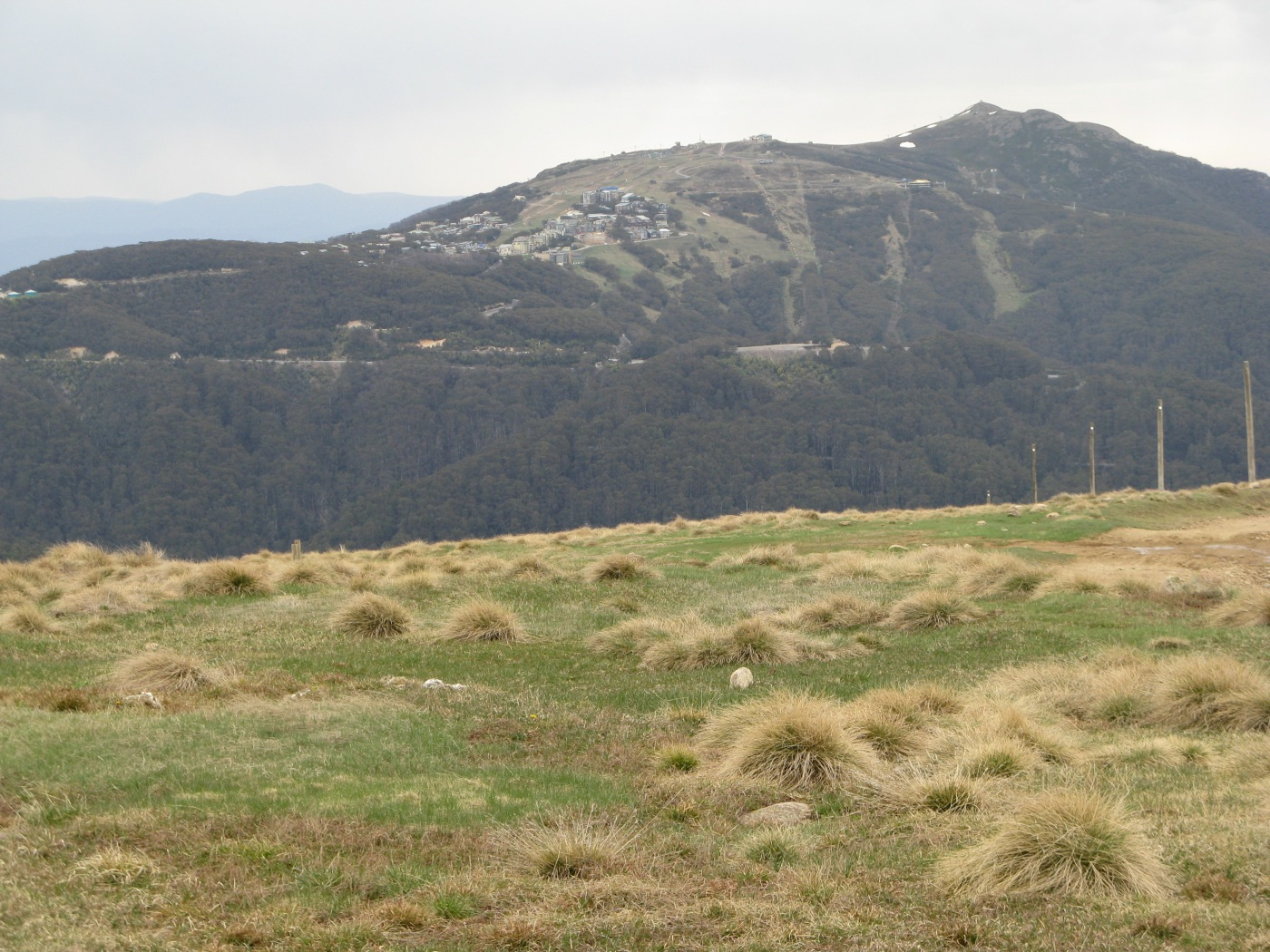 Mt Buller is already over developed. Is the road part of a plan to see similar development on Mt Stirling?