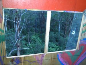 a view from the treehouse