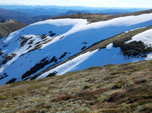 south west gullies of Mt Hotham