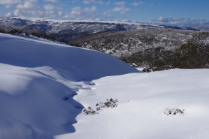 some good conditions from last year. Early July 2013, Mt Loch, VIC