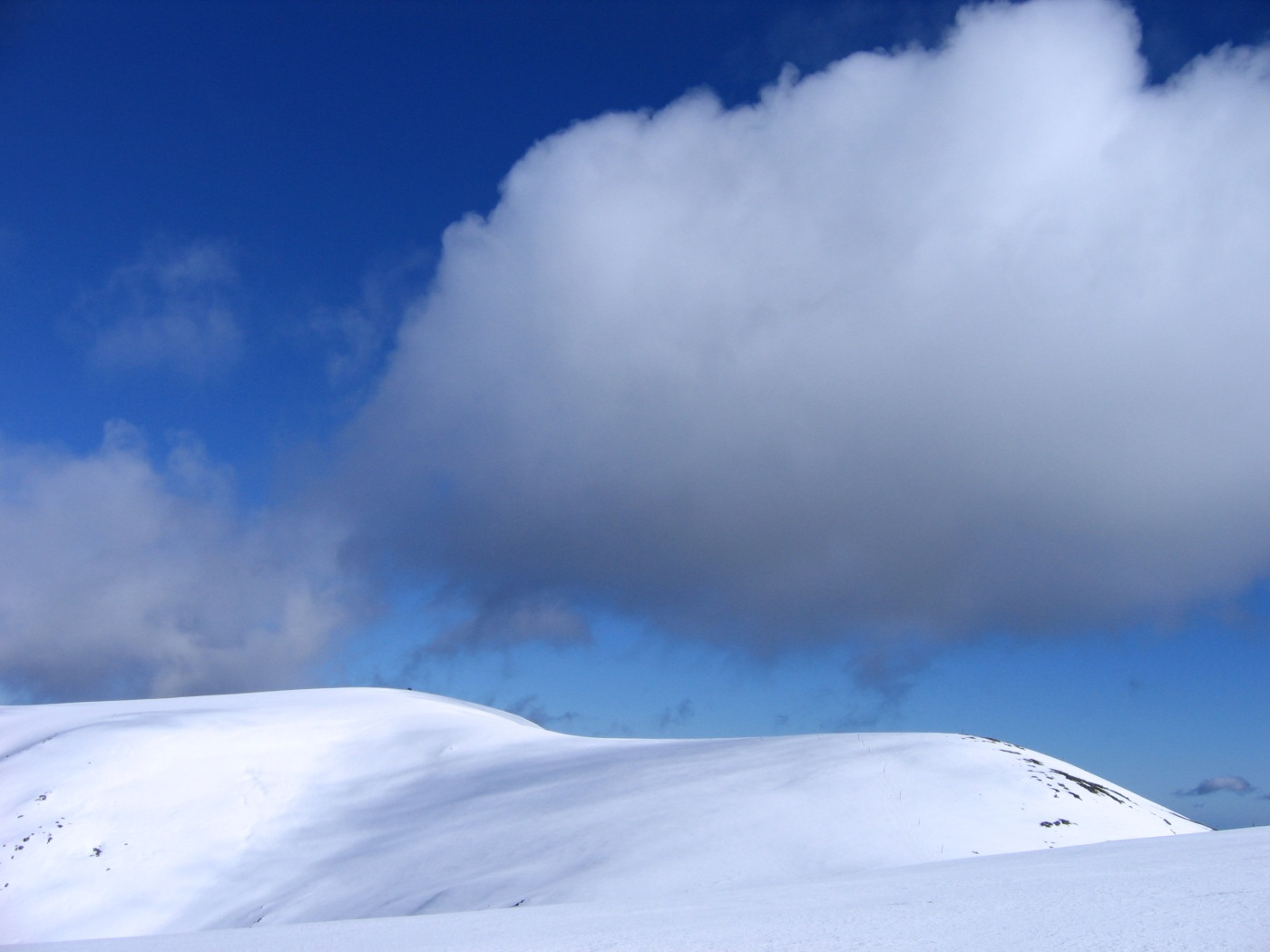 Bogong summit and Hooker Plateau