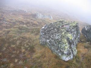 Mt Howitt