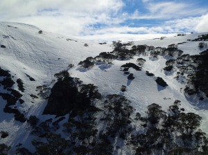 Eagle Ridge, Hotham