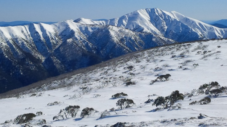 Feathertop, in all its glory