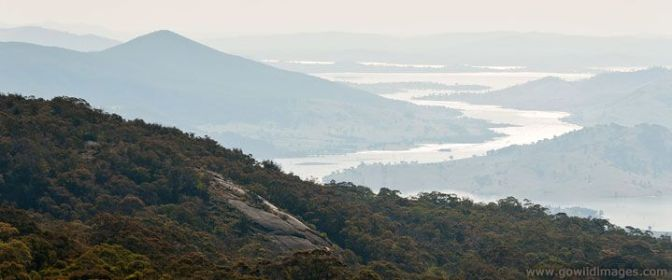 Mount Lawson summit. Image - Parks Victoria