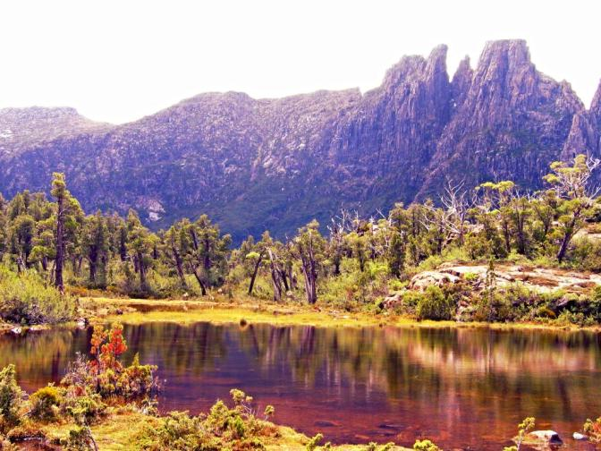 Tasmania plans to open wilderness world heritage area to logging and tourism