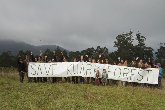 Kuark forest2
