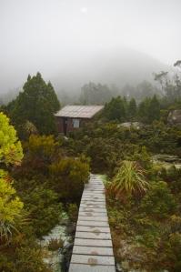 Newdgate hut, TAS