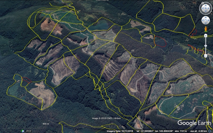 Rubicon logging coupes 20191114